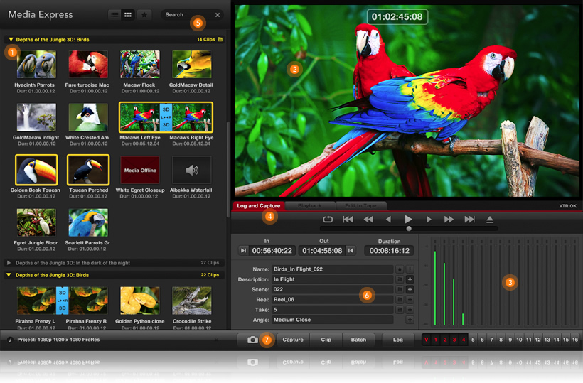 Blackmagic Design Intensity Software